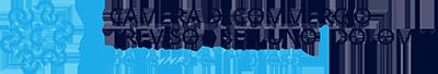 Logo Camera di Commercio Treviso - Belluno Dolomiti